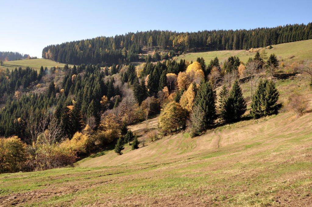 Berglandschaft in Höllein auf dem Mödringbergzug - Höllein, Kärnten (9341-KTN)