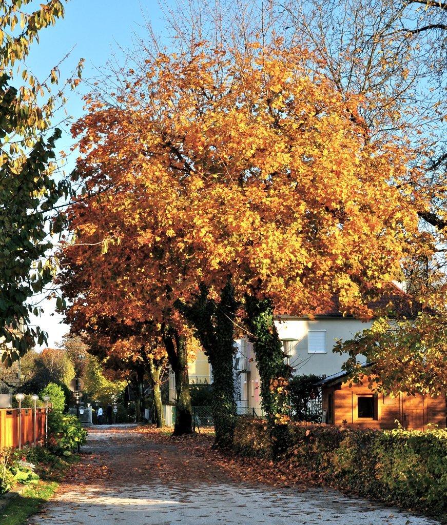 Annastraße - Annastraße, Kärnten (9210-KTN)