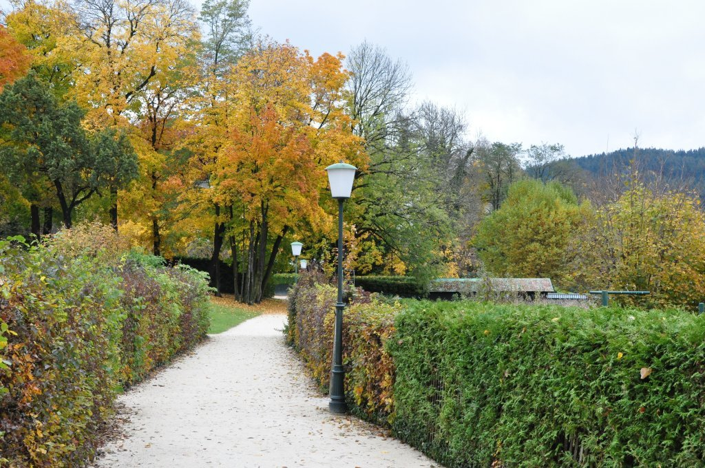 Johannaweg entlang der Ostbucht - Johannaweg, Kärnten (9210-KTN)