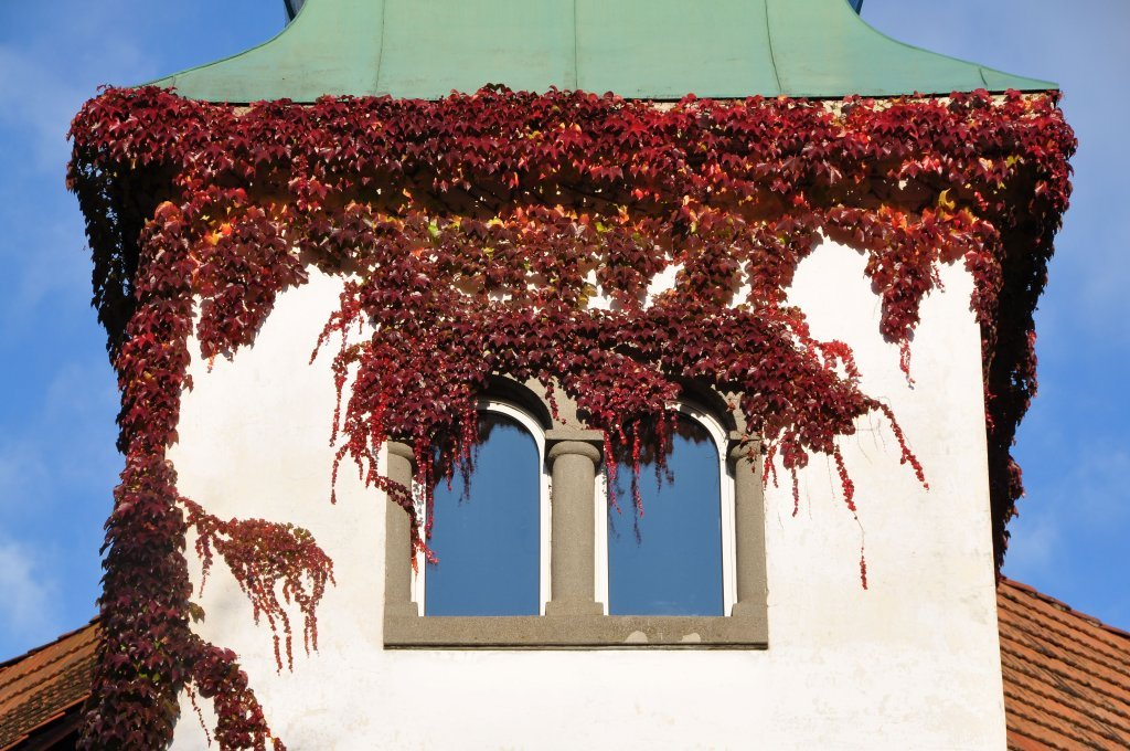 Eckturm-Fenster am Schloss-Hotel Leonstain - Pörtschach am Wörther See, Kärnten (9210-KTN)