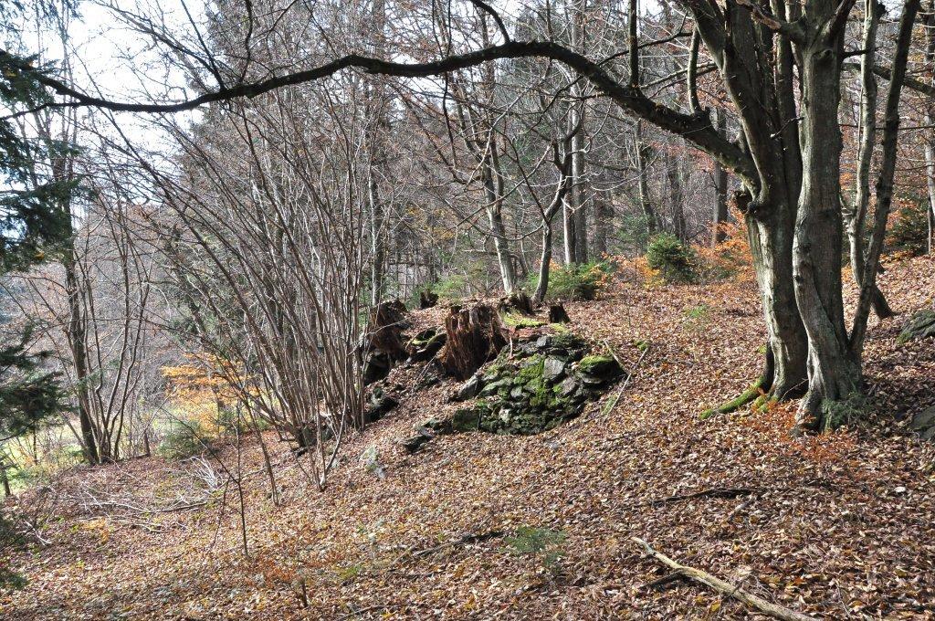 Alte Steinmauer auf der Pörtschacher Alm - Pörtschach am Wörther See, Kärnten (9210-KTN)