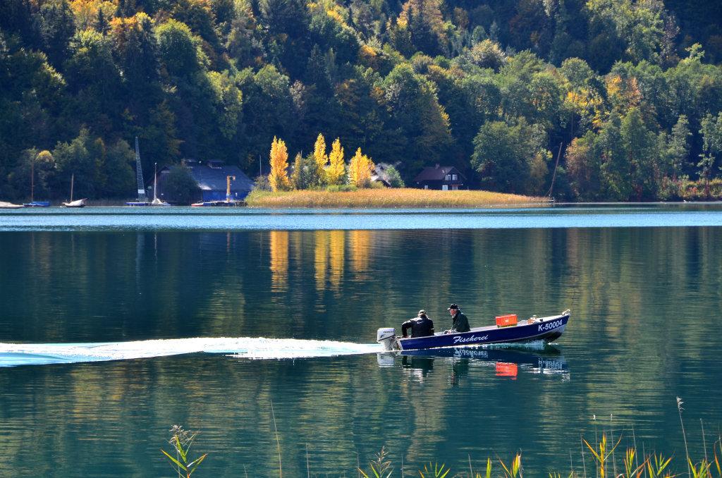Fischerboot vor dem Landspitz - Pörtschach am Wörther See, Kärnten (9210-KTN)
