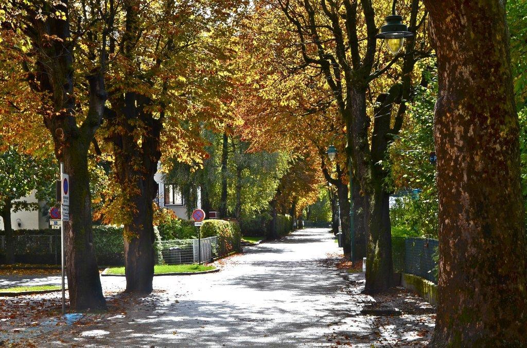 Elisabethstraße im Herbstkleid - Pörtschach am Wörther See, Kärnten (9210-KTN)