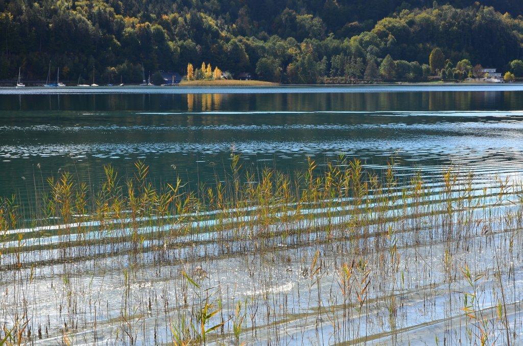 Herbststimmung am Wörthersee vor dem Landspitz an der Halbinselpromenade. - Pörtschach am Wörther See, Kärnten (9210-KTN)