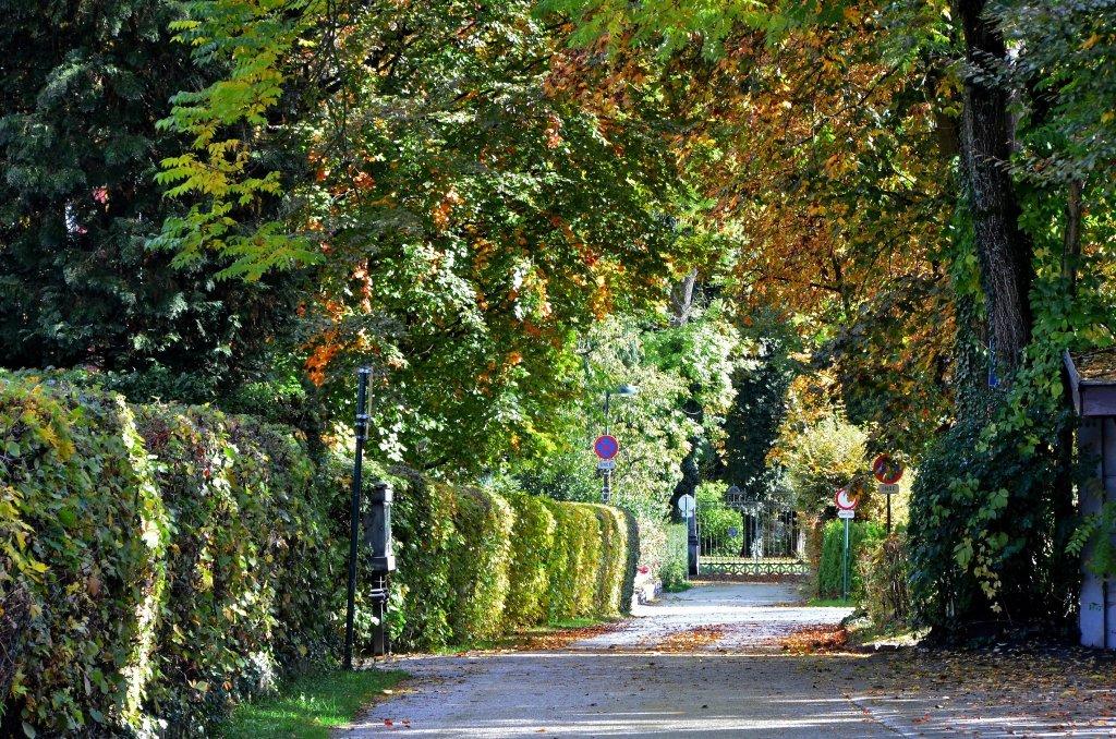 Annastraße im Herbstkleid - Annastraße, Kärnten (9210-KTN)