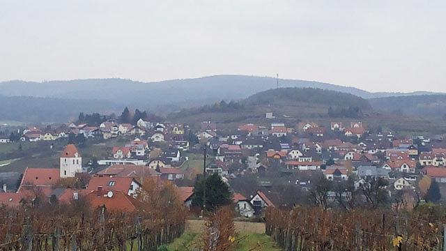 Übersichtsaufnahme von einem Weinberg über die Senke von Lengenfeld. - Lengenfeld, Niederösterreich (3552-NOE)