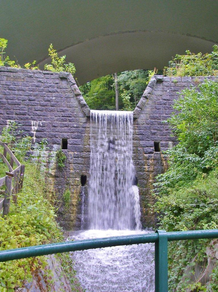 Wasserlauf am Gosauergraben - Gosauergraben, Oberösterreich (5310-OOE)