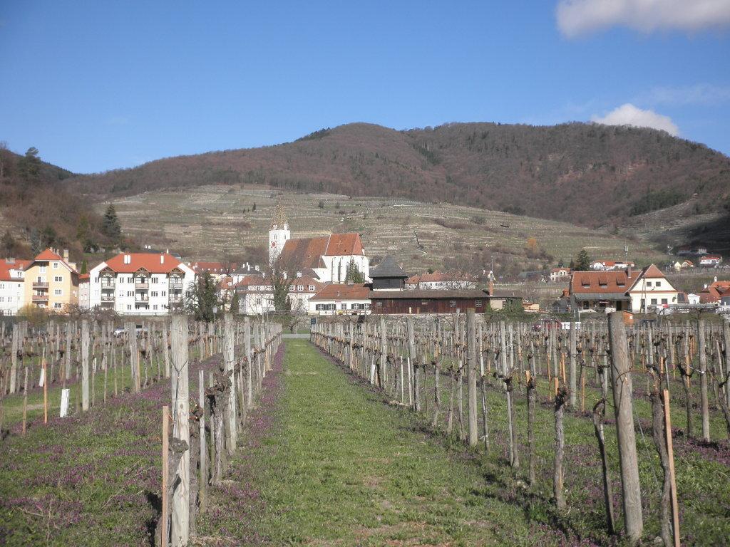 Spitz an der Donau - Spitz, Niederösterreich (3620-NOE)