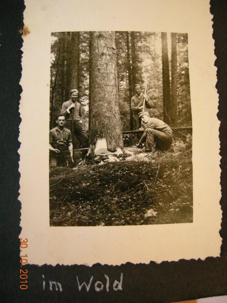 vor 70 Jahren - Eichenberg, Vorarlberg (6911-VBG)