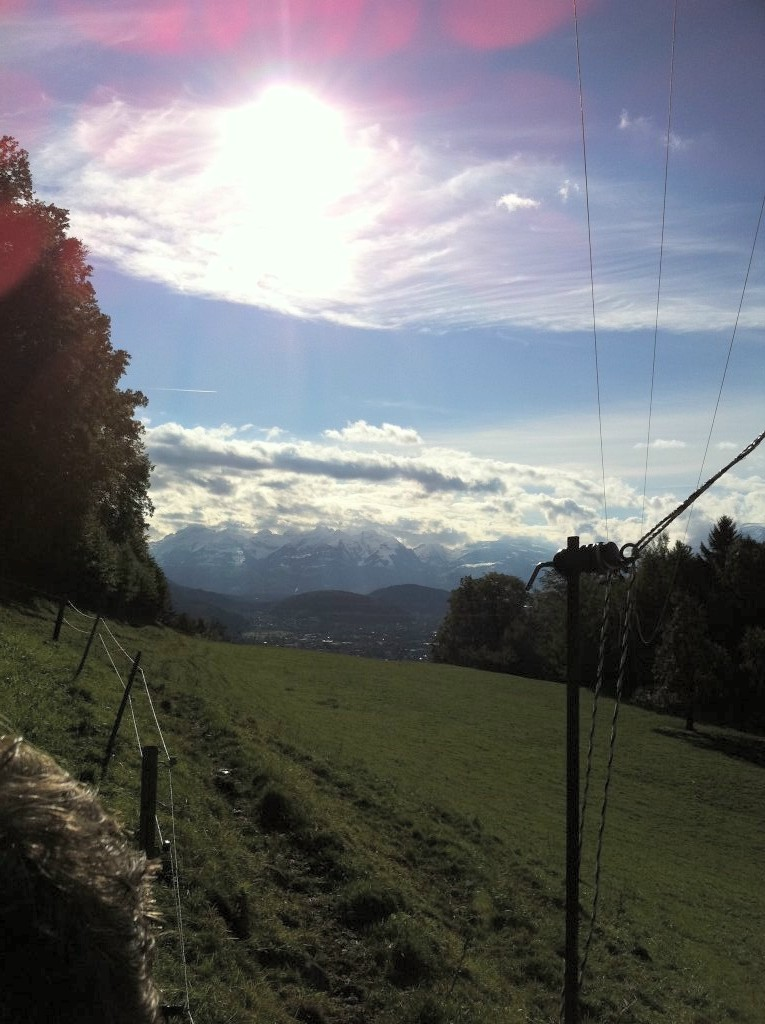 Dafins - der Berg über den Wolken - Dafins, Vorarlberg (6832-VBG)