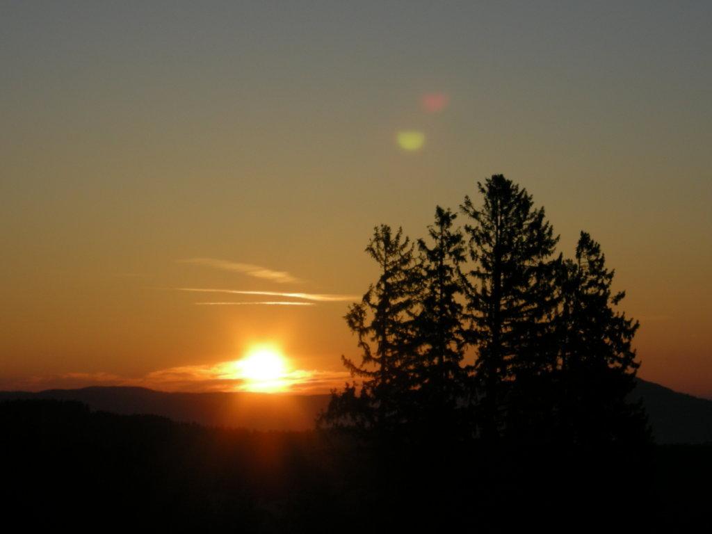 Eine Morgenstimmung in der Steiermark!!! - Steiermark (STM)