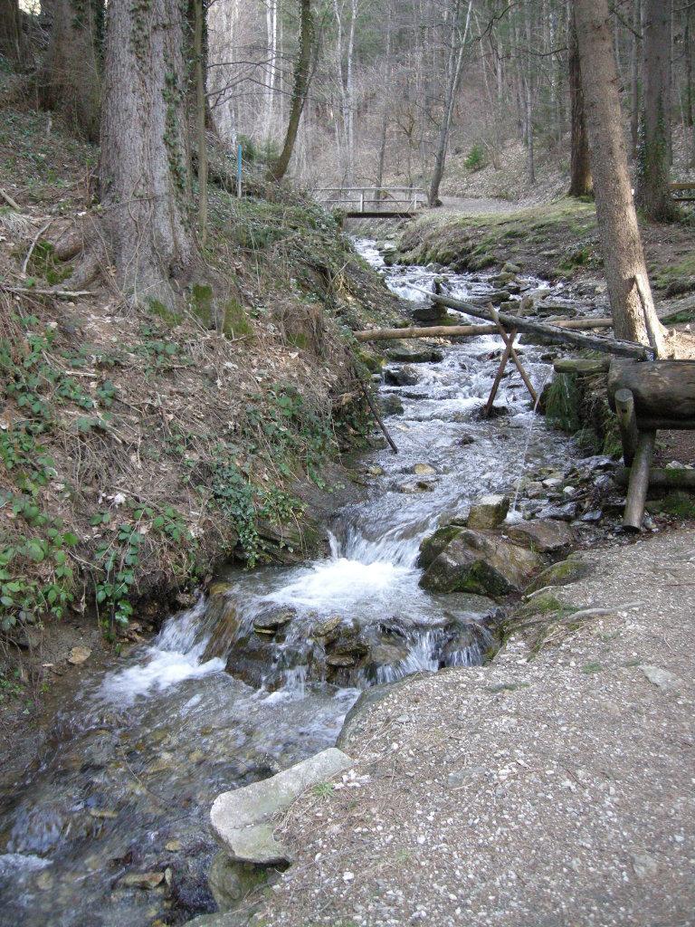 Bach entlang des Kneippweges bei St.Radegund - St. Radegund bei Graz, Steiermark (8061-STM)