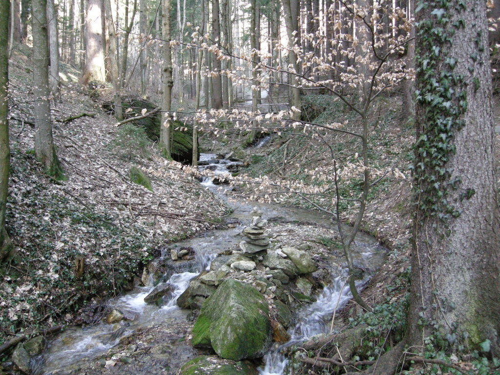 Bach entlang des Kneippweges bei St.Radegund mit Stanamanndl - St. Radegund bei Graz, Steiermark (8061-STM)