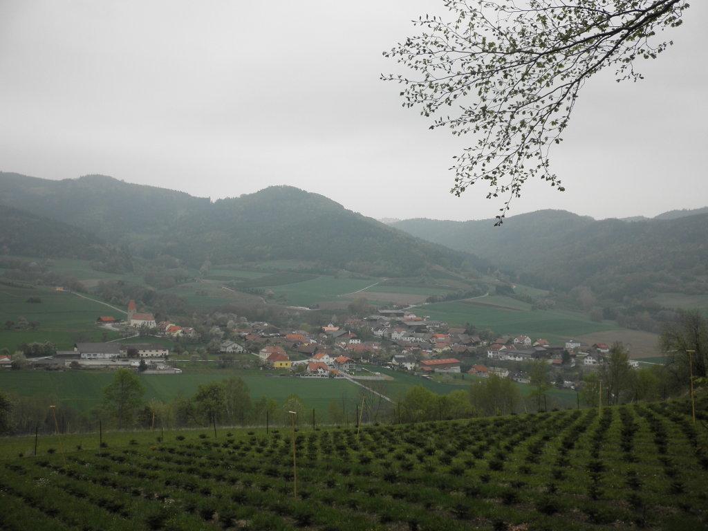 Fernblick nach Trandorf - Trandorf, Niederösterreich (3622-NOE)