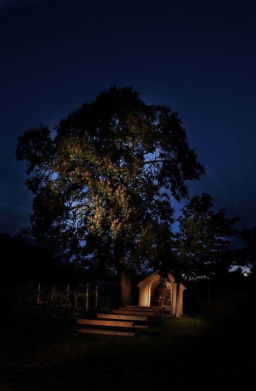 Der Heilige Stein, lichtbemalt. - Mitterretzbach, Niederösterreich (2070-NOE)