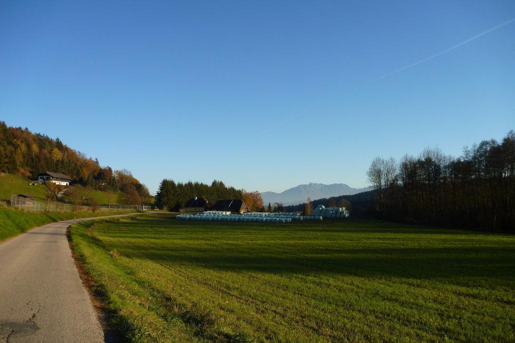 Lippitz 2. 11. 2015 - Lippitz, Kärnten (9063-KTN)