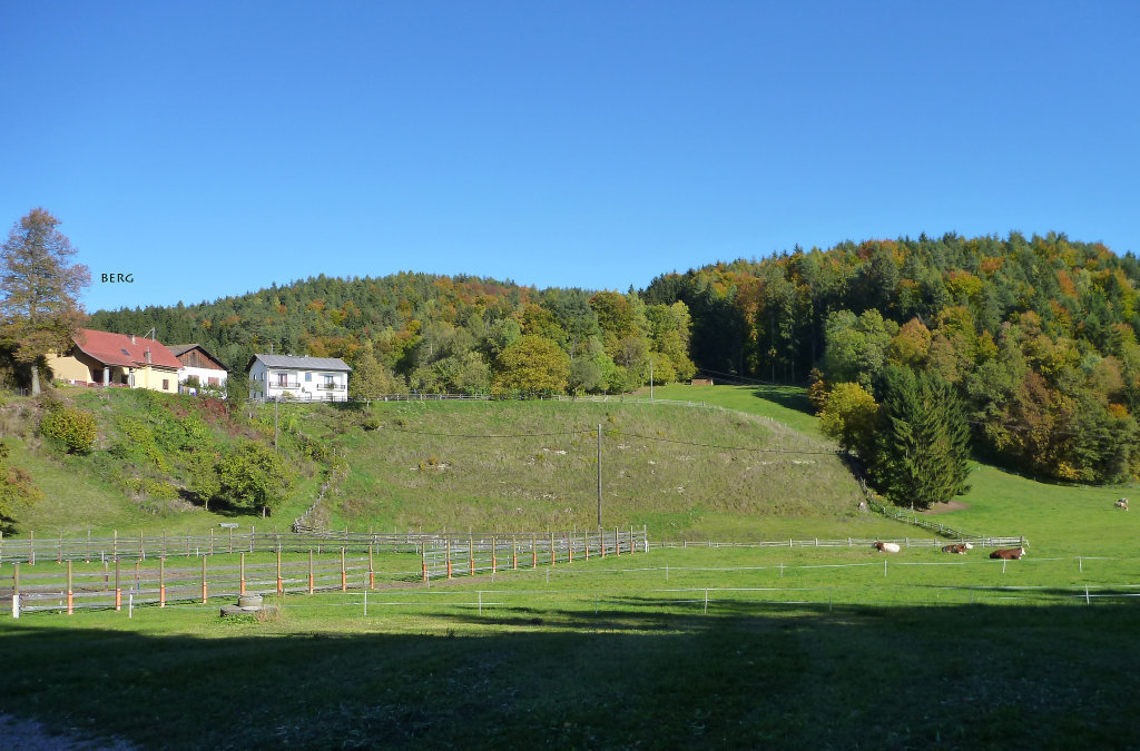 Berg - Gemeinde Ebenthal - Berg, Kärnten (9131-KTN)
