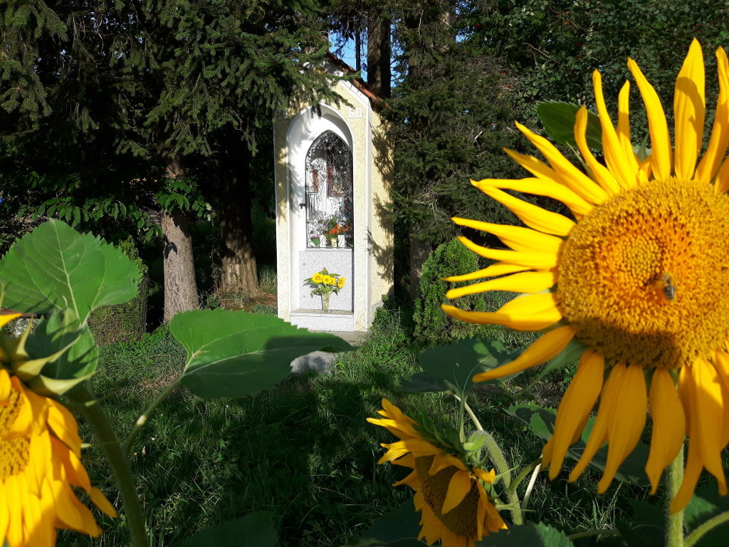 Kapelle Aiginger - St. Michael am Bruckbach, Niederösterreich (3352-NOE)
