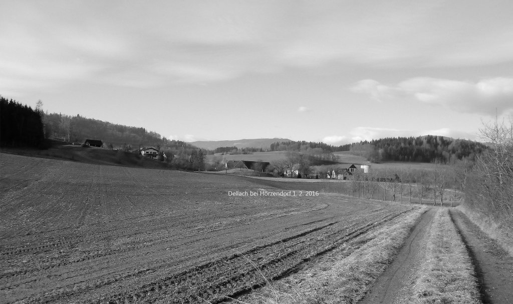 Dellach am 1. 2. 2016 - Dellach, Kärnten (9300-KTN)