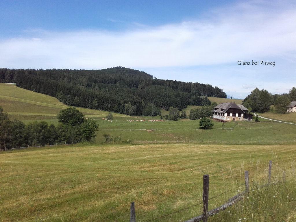 Glanz bei Pisweg, Juni 2016 - Glanz, Kärnten (9342-KTN)