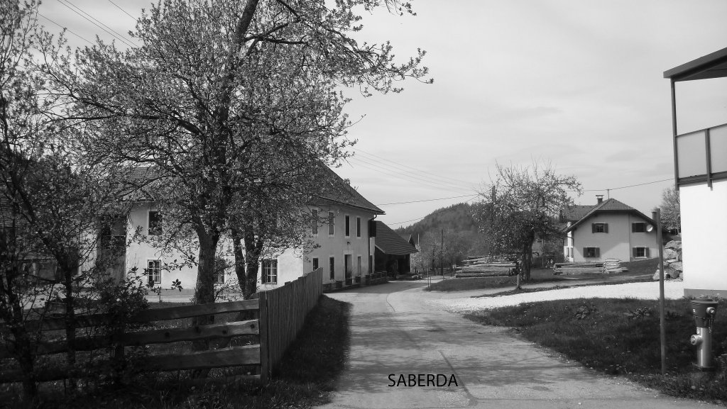 Saberda 13. 4. 2017 - Saberda, Kärnten (9161-KTN)