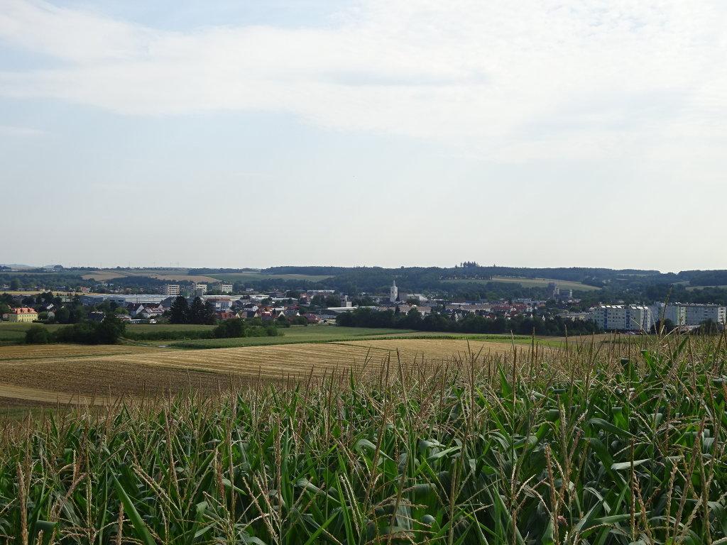 Blick nach Ober-Grafendorf - Ober-Grafendorf, Niederösterreich (3200-NOE)