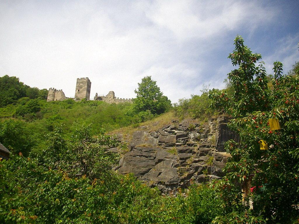 Ruine Hinterhaus - Spitz an der Donau - Spitz, Niederösterreich (3620-NOE)
