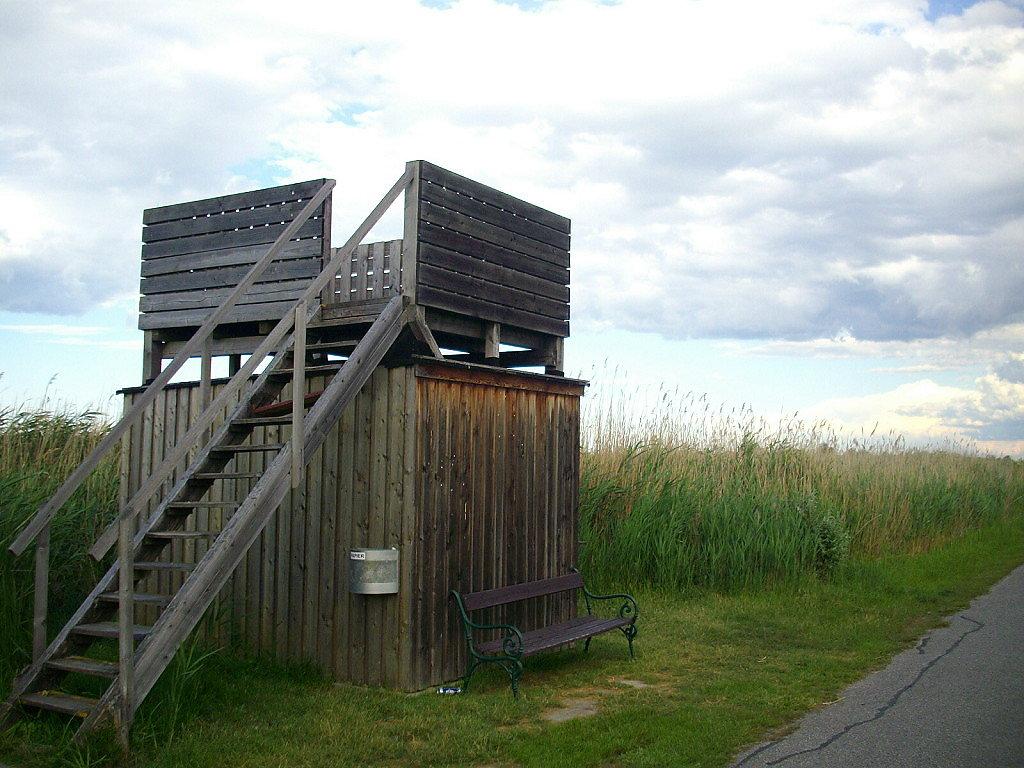 Watchtower an der Straße zum Camp Breitenbrunn - Breitenbrunn, Burgenland (7091-BGL)