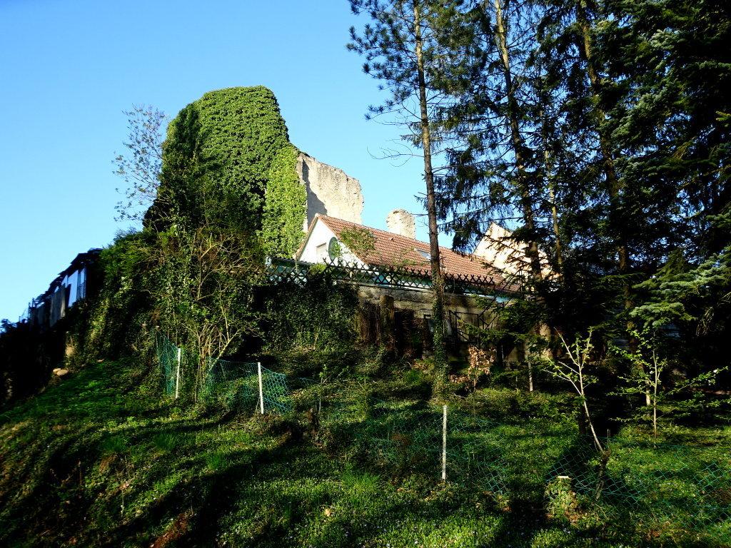Kirchenruine Rafingsberg - Rafingsberg, Niederösterreich (3841-NOE)