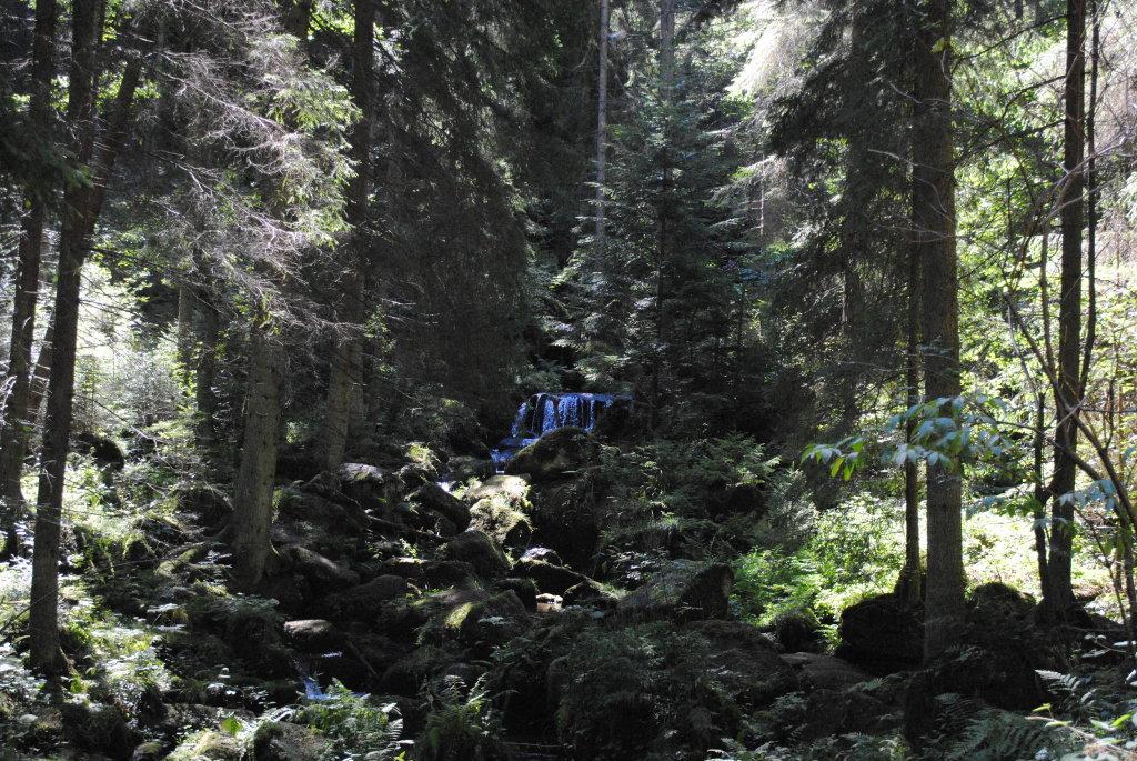 Lohnbachfall - Pehendorf, Niederösterreich (3911-NOE)